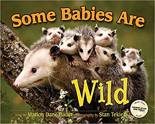 Fun Nonfiction Books for Kids